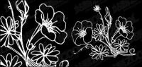 Material de vetor de flores Baimiao