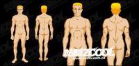 Material de vector humana masculina