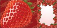 イチゴのベクター素材