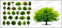 Un número de árboles de vectores de material