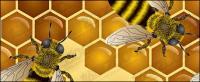 Material de ilustración vectorial de abeja tema