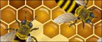 Biene Thema Vektor Werkstoff
