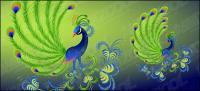 孔雀のベクター素材