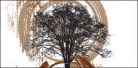 Material de tema de árvore de ilustração vetorial