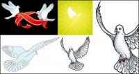palomas de vectores de material