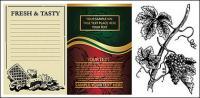 コンチネンタル酒包装のベクター素材