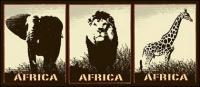 Girafe de lion éléphant vecteur matériel