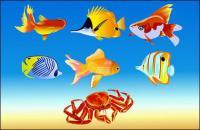Pescado y cangrejo de vectores