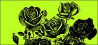 Rosas de estilo de pintura de pluma de vectores de material