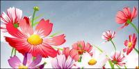 Matériau de vecteurs de belles fleurs