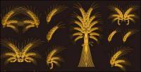 Europ�ischen dekoratives Element Vektor materiell gold