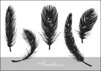 Vector silueta de plumas realista