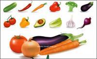 Varias verduras comunes de vectores de material