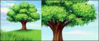 วัสดุแบบเวกเตอร์ต้นไม้