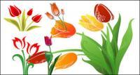 Material de vetor Tulip