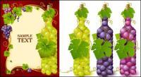 زجاجات مليئة بمواد مكافحة ناقلات العنب