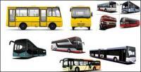AUTOBÚS bus vector material