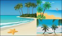 5 เวกเตอร์หาดภูมิประเทศ