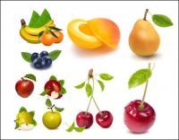 AI векторного рисования реалистичные фрукты