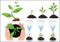 Вектор саженцев растений