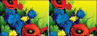Vecteur de magnifiques fleurs de matériel