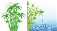 Bambus-Vektor