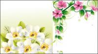 벡터 꽃 테두리 u0026amp; 배경
