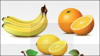 Fruits frais de vecteur