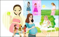 7 mujeres embarazadas, Vector