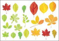 Vector de hojas