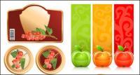 Frutas e gráficos vetoriais
