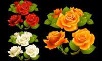 Quel bel un vecteur de rose