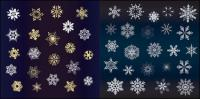 Une variété de belle neige vecteur