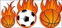 Fútbol y baloncesto llama vector