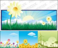 ภาพประกอบชุดรูปแบบของดอกไม้ที่สวยงาม