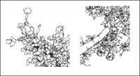 Borboleta flor, papoula, centáurea, pêra, flores de cerejeira