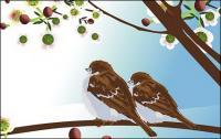 Dos pájaros de vectores