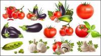 唐辛子、ナス、トマト、ニンニク、豆、キュウリ、トマト
