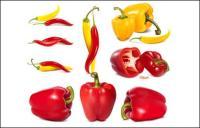 cpepper, legumes, pimentão vector