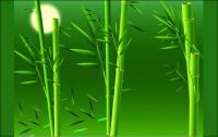 Material de vetor de bambu real