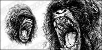Material de vector de feroz gorila