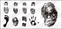 Empreintes, des empreintes digitales et des matériaux de vecteur de palm
