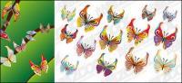 14 Bahan vektor kupu-kupu