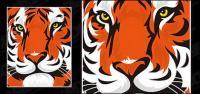 Material de vectores cabeza de Tigre destacados