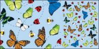 Material de ilustración del insecto vector