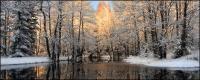 Snowmelt 숲 그림 자료