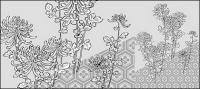 Dessin vectoriel de fleurs-39(Chrysanthemum, background)
