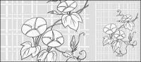 Dibujo de líneas de vector de flores-26(Morning glory, lattice background)