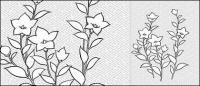Flowers-28(Campanulaceae) のベクトル線の描画