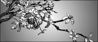 Dibujo de líneas en blanco y negro vector Mu Mianhua